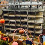 RopeWalks Construction Site - 23-10-17 - Aspen Woolf 1